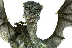 Stor och kraftig grön drake som nästan poserar kameran Arkivfoton