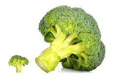 Stor och liten ny broccoli Fotografering för Bildbyråer
