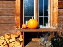 Stor och liten pumpa framme av fönstret i härligt solljus 2 arkivfoto
