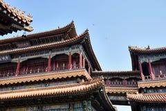Stor opera Hall i Peking, Kina Royaltyfri Foto