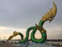 Stor orm på den Mae Khlong floden Royaltyfria Foton