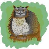stor owl Fotografering för Bildbyråer