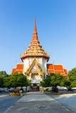 Stor pagod Royaltyfri Fotografi