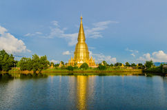 Stor pagod i lumphun Royaltyfria Foton