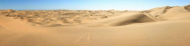 Stor panorama för sanddyn Texturerad bakgrund för öken eller för strand sand royaltyfri bild