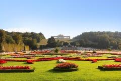 Stor Parterreträdgård på den Schonbrunn slotten Royaltyfri Bild