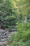 Stor Pocono delstatspark i Pennsylvania Arkivbilder