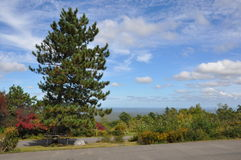 Stor Pocono delstatspark i Pennsylvania Arkivbild