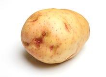 Stor rå potatis som isoleras på vit bakgrund Arkivfoto