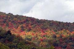 Stor rökig bergnationalpark Royaltyfri Fotografi