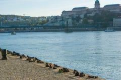 Stor saluhall, Budapest Arkivfoton