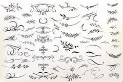 Stor samling av calligraphic krusidullar f?r vektor f?r design stock illustrationer