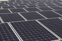 Stor samling av solar�panels Royaltyfria Foton