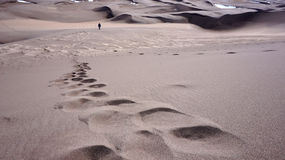 Stor Sanddynnationalpark Royaltyfri Fotografi