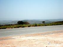 stor savannahamazon Venezuela gräsplan royaltyfria bilder