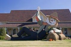 stor scarecrow Royaltyfri Bild