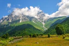 Stor sikt av de alpina ängarna med blå himmel på foten Mt Ushba Arkivbild
