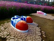 Stor sko Fotografering för Bildbyråer