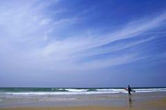 stor sky Royaltyfri Foto