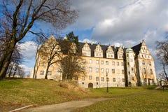 stor slott Royaltyfri Fotografi