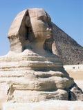 stor sphinx Royaltyfri Fotografi