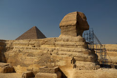 stor sphinx Royaltyfria Foton