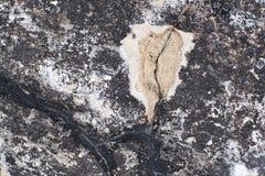Stor spricka i betong Mörk cementyttersida arkivfoton