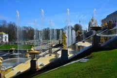 Stor springbrunnkaskad i Peterhof, St Petersburg, Ryssland Royaltyfria Bilder