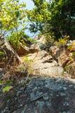 Stor sten i bergskog royaltyfri bild