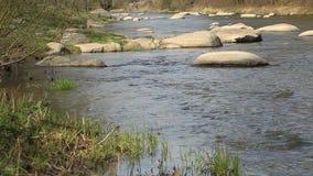 Stor sten i vårfloden lager videofilmer