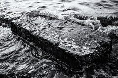 Stor sten på kusten Arkivfoto