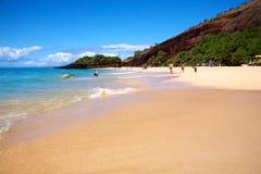 Stor strand Fotografering för Bildbyråer