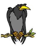 Stor svart fågel på en filial Royaltyfri Foto