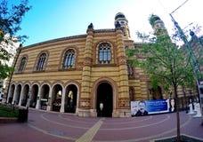 stor synagoga Arkivbild