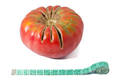 stor tomat Arkivbild
