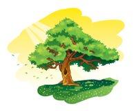 Stor tree Vektor Illustrationer