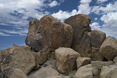 stor tree för stenblockjoshua nationalpark Royaltyfria Bilder