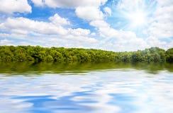 stor tropisk skogflod Royaltyfri Fotografi