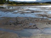 Stor tur till Kamchatka Mystiska ställen fotografering för bildbyråer