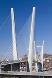 Stor upphängningbro royaltyfria bilder