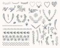 Stor uppsättning av blom- beståndsdelar för grafisk design Arkivfoto