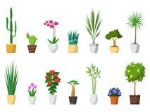 Stor uppsättning av dekorativa husväxter med den isolerade krukan Royaltyfri Foto