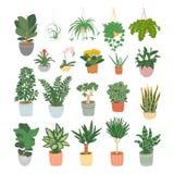 Stor uppsättning av houseplants som isoleras på vit bakgrund Home tr?dg?rd ocks? vektor f?r coreldrawillustration stock illustrationer