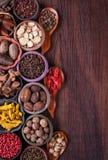 Stor uppsättning av kryddor och smaktillsatser arkivbild