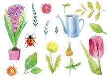 Stor uppsättningsamling - den blom- trädgården, våren eller sommar som bevattnar kan, blommor, gräs och nyckelpigor, blomkrukor p Royaltyfri Foto