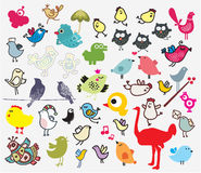 Stor uppsättning av olika gulliga fåglar. Royaltyfri Bild