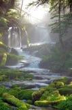 Stor vårliten vikvattenfall Arkivfoton