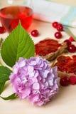 Stor vanlig hortensiablom framme av morgonrostade bröd arkivfoton