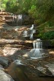 stor vattenfall för skog royaltyfri fotografi