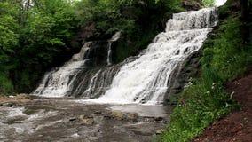 Stor vattenfall i skog arkivfilmer